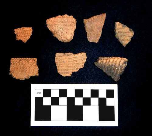 Decorated rim and body sherds of Middle Woodland pottery from Belle Island.